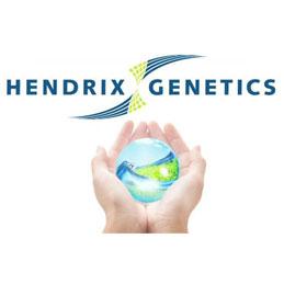 HENDRIX GENETICS, S.A.U.
